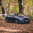 image Bentley_Continental-GT-Supersports-22.jpg
