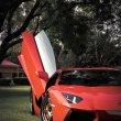 image Lamborghini-Aventador-vs-Olifant-26.jpg