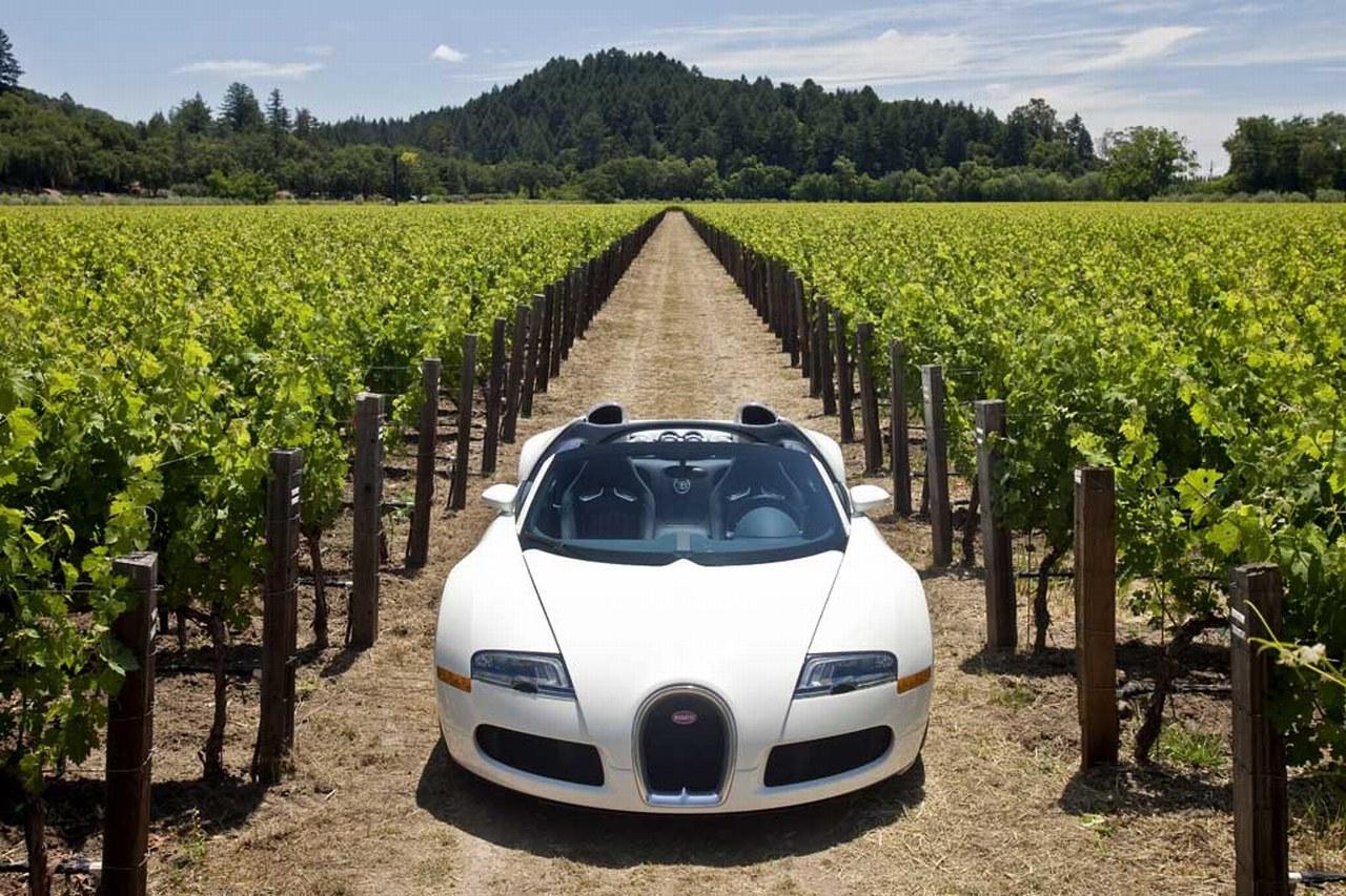 Bugatti_Veyron_Grand_Sport_01.jpg
