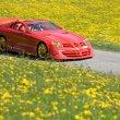 image Mercedes_SLR_McLaren_999_Red_Gold_Dream_71.jpg