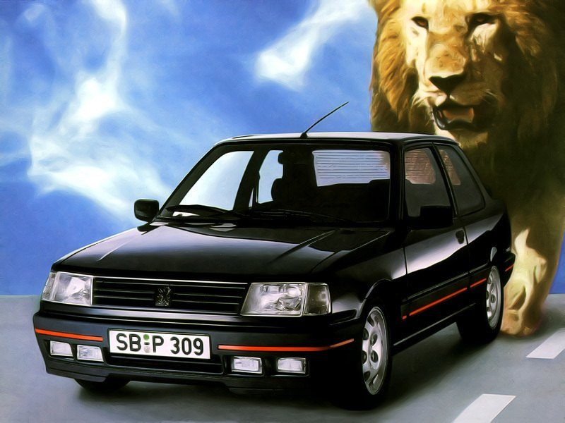 Peugeot-309-GTI-klassiekers-01.jpg