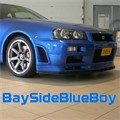 BaySideBlueBoy