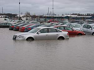 Zwemmende Audis