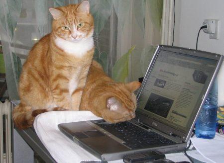Autoblog redactie
