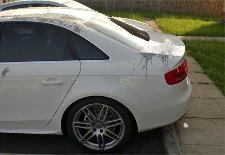 Audi A4 terpentine