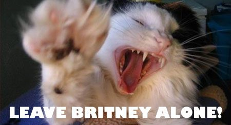 Leave Britney alone!