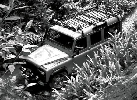 Land Rover Defender in de jungle