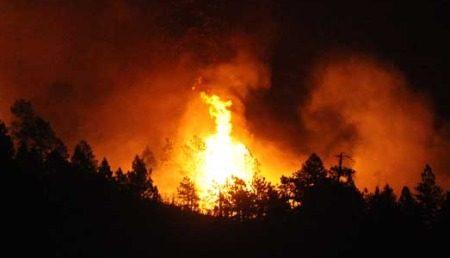Bosbrand in Colorado