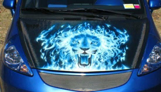 Een leeuw op je kap