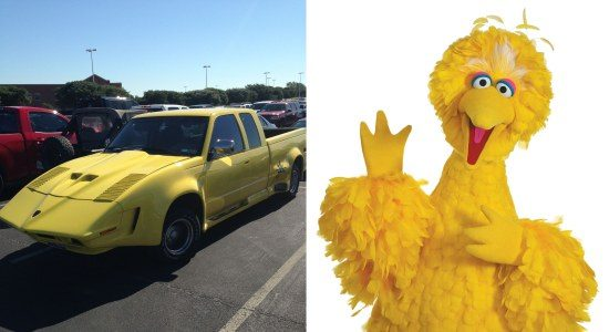 Pickup vs big bird