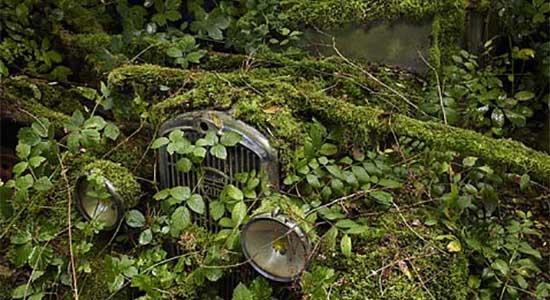 Gaan we auto's van natuurlijke materialen bouwen?