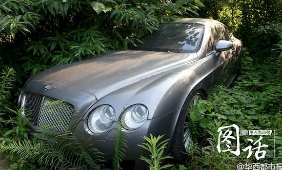 Bentley-Planten