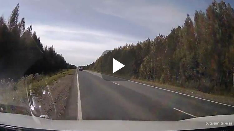 Video: Alcomoblist filmt eigen stupiditeit