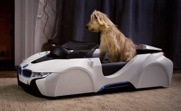BMW dDrive i8 Dog