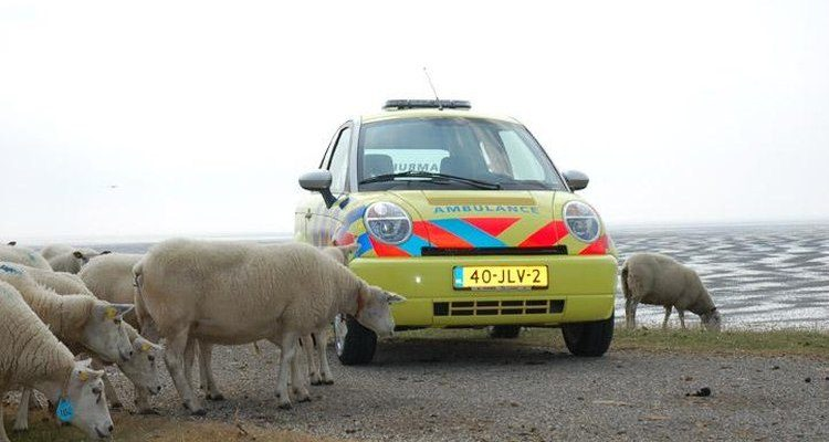Think Ambulance bij het Wad